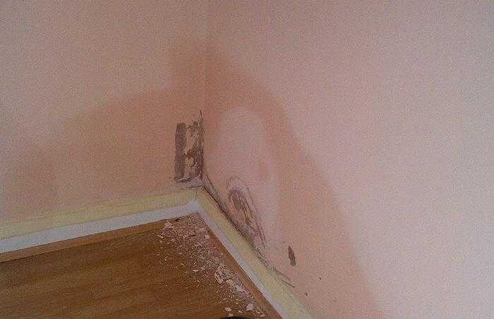 damp walls caused by rising damp