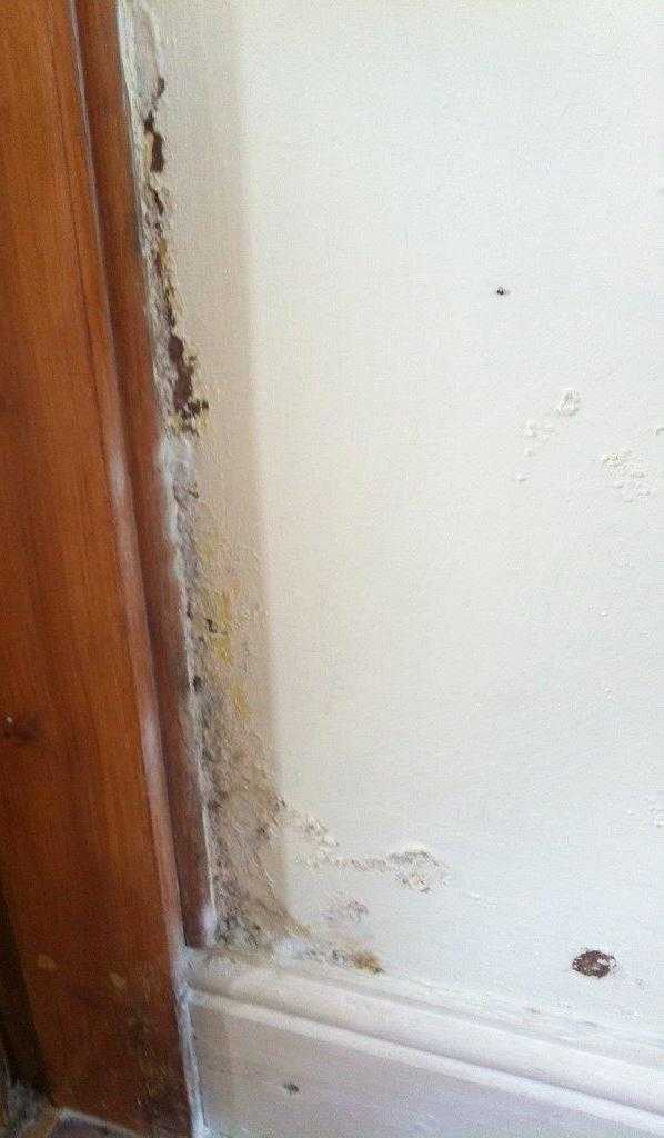 photograph rising damp by door