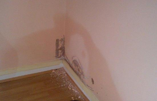 Read More About How to Treat Rising Damp