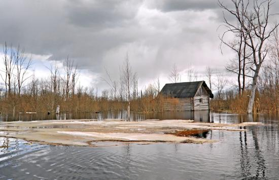Read More About How to protect your home from flooding