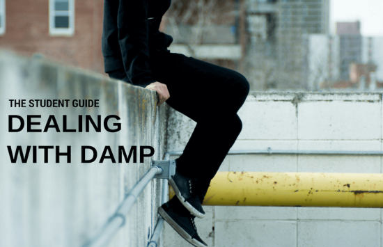 Read More About Student Guide to Damp