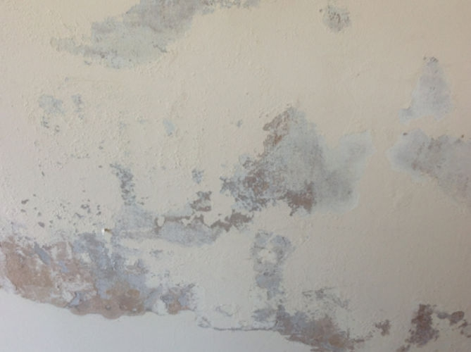 Penetrating Damp on wall