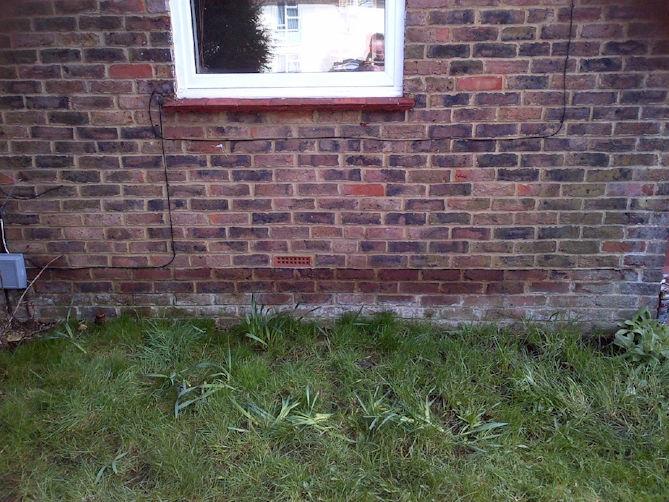 Rising damp on exterior brick wall