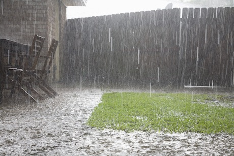 garden fence in bad weather
