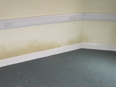 checking for damp when home buying